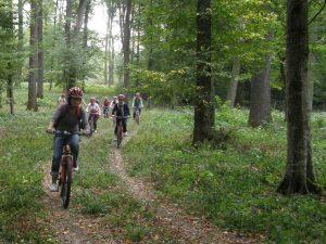 Circuite recomandate (cu hărți): 3 prin pădure (1-3h) / 2 prin localități (pista de biciclete) / 3 mixte (2-5h)