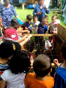 Copiii învață ce mănâncă păsările domestice și le hrănesc chiar ei.