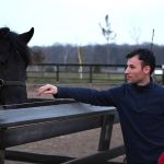 "La caii de la ""Poveste cu Cai"" de la Artha Park"