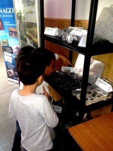 Expoziția de insecte i-a făcut curioși pe copii... Pentru unii e prima dată când le vad și în realitate....