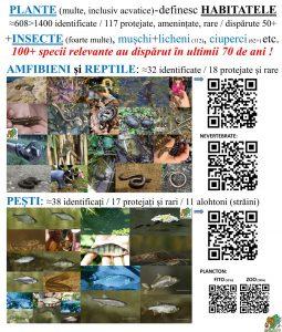 PoliPlanGard=85x100=Biodiversitate=4200+ Specii=+ArthaPark=02b_CT 25%
