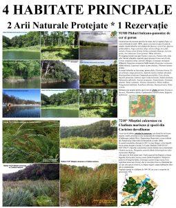 Poliplan=85x100cm=Biodiversitate=4 Habitate=+Habitate Complexe=03a_CT 25%
